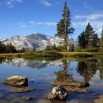 Yosemite Park Tours